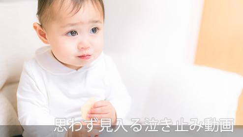 赤ちゃんが泣き止む動画の決定版!カフカくん動画の秘密