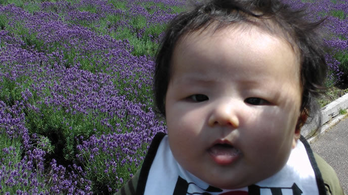 家族でおでかけ中の首のすわった赤ちゃん