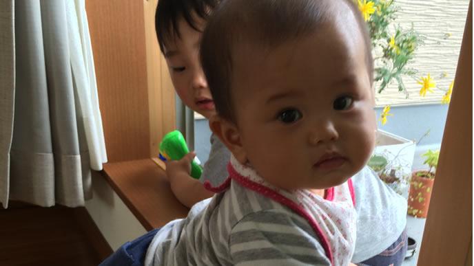 たっちしてカメラ目線をきめる赤ちゃん