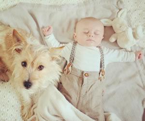 犬と一緒に仲良く眠るオーバーオールの赤ちゃん
