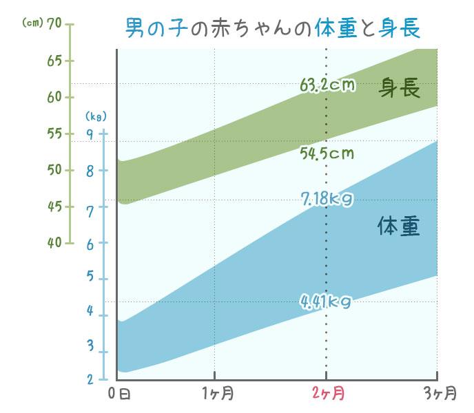 生後2ヶ月の男の子・身長と体重の発育