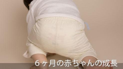 6ヶ月の赤ちゃんの成長・離乳食のコツと感染症への対処法