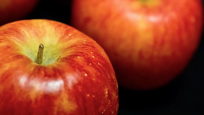 お腹を整える離乳食に最適なリンゴ