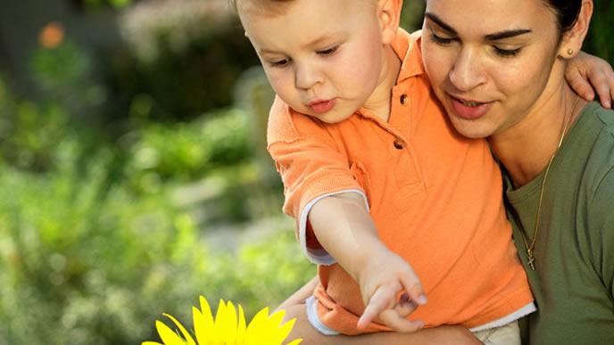 ヒマワリで赤ちゃんとコミュニケーションを取るママ