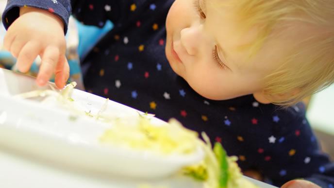 離乳食に飽きて遊び始める1歳の男の子