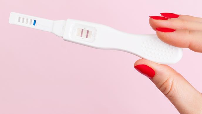 妊娠検査薬が示す反応
