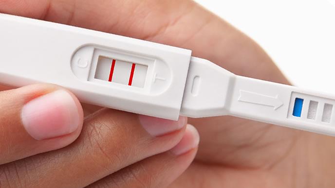 妊娠検査薬の味方を示す女性
