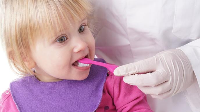歯医者さんに歯磨きの仕方を教えてもらう赤ちゃん