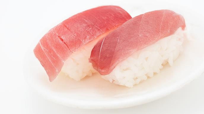 近海でとれた新鮮なマグロのお寿司