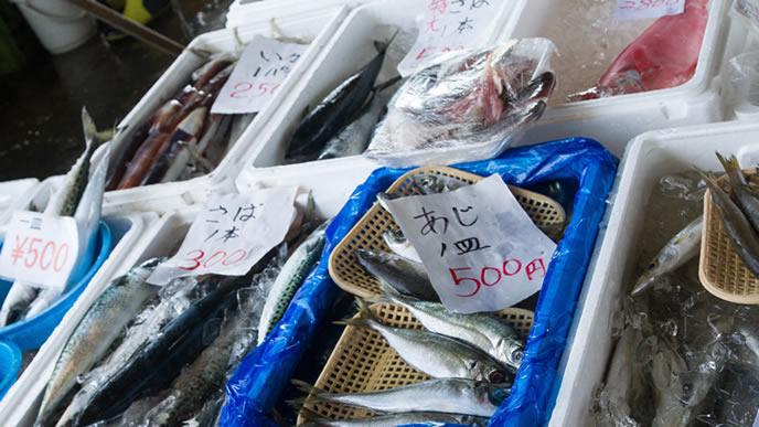市場に並んだ新鮮な魚介類