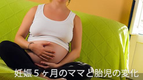 妊娠5ヶ月妊娠中期の身体の変化・安定期の過ごし方