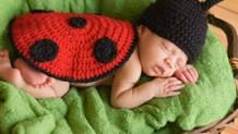 160504_baby-insectbites2