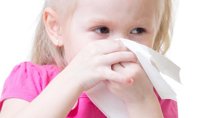 うまく鼻水がかめなくて苦労している女の子