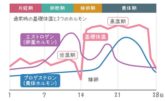 プロゲステロンとエストロゲンと基礎体温のグラフ