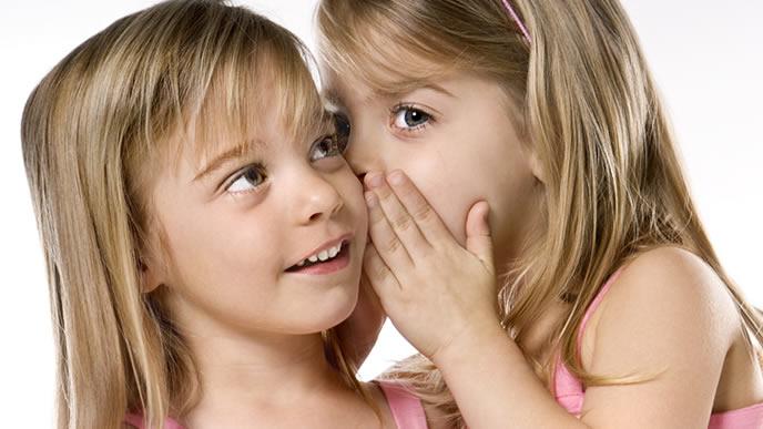 秘密を教えてくれる双子の姉妹