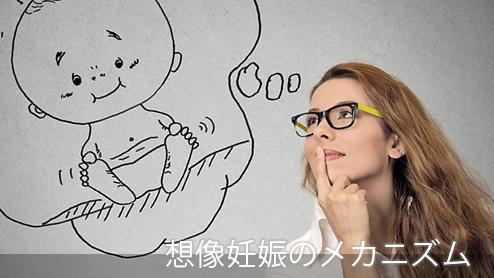 想像妊娠とは?脳の誤認による想像妊娠のメカニズム
