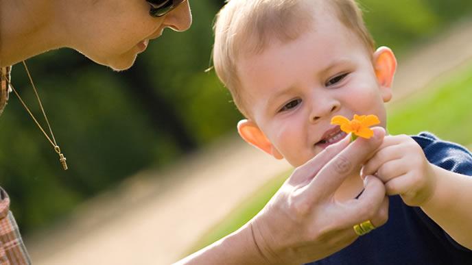 ママと散歩中にお花を見つけ喜ぶ赤ちゃん