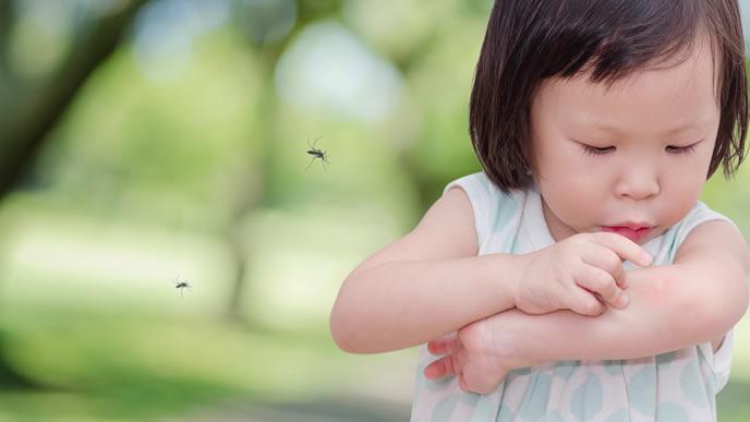 蚊に刺されたところがかゆい赤ちゃん