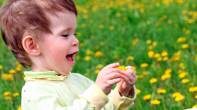 夏のお花畑ではしゃぐ男の子