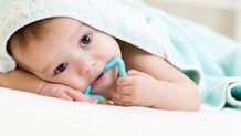 歯がためのおすすめ|赤ちゃんに安心素材&食材歯がため