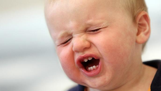 蚊に刺されて泣き叫ぶ赤ちゃん
