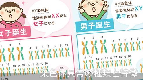 染色体異常の種類|ダウン症やその他の染色体異常と特徴