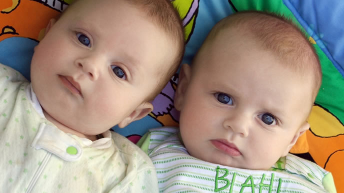 仲良く並んだ双子の赤ちゃん