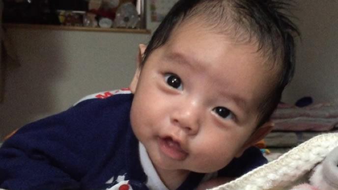 赤ちゃん同乗マークのエピソードに興味津津の赤ちゃん