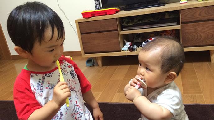 歯磨きをしている仲良し兄弟