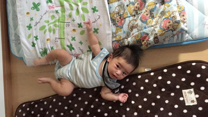 ベッドから転げ落ちた赤ちゃん