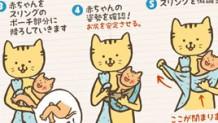 スリングで新生児が落ち着く理由&安全なコアラ抱っこの方法