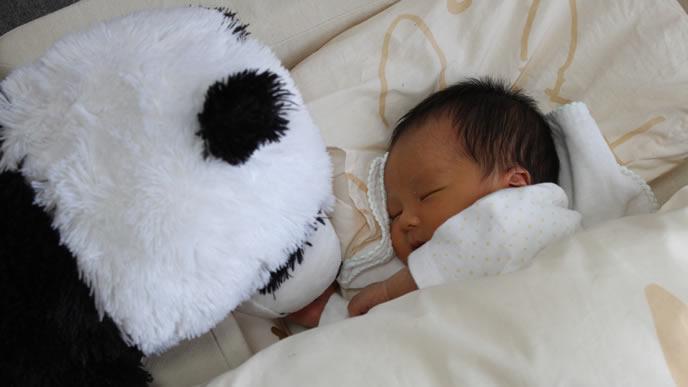 仲良しのぬいぐるみ一緒に寝る乳児内斜視の赤ちゃん