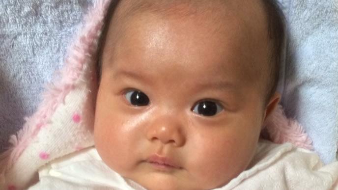 カメラ目線の新生児