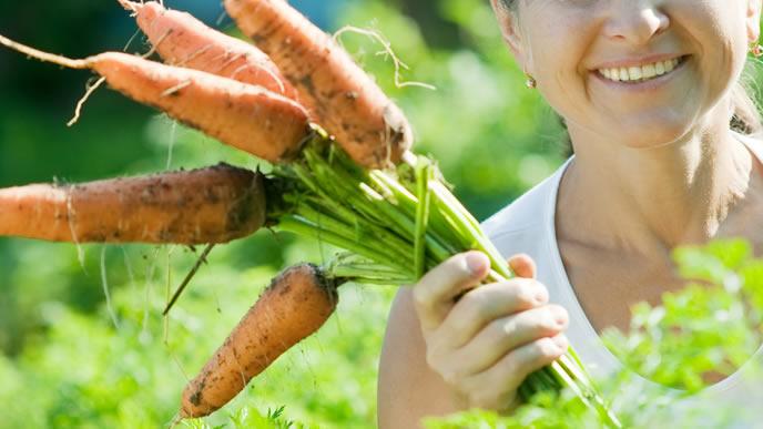 自家栽培のニンジンを持ち笑顔になる農家