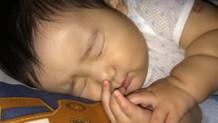160711_hfmd-nursery2