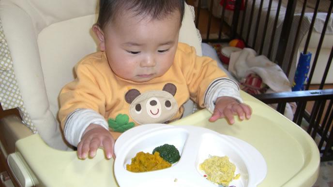 離乳食を目の前にして考え込む赤ちゃん