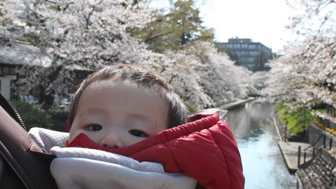 赤ちゃんとの思い出を残すためにとられた写真