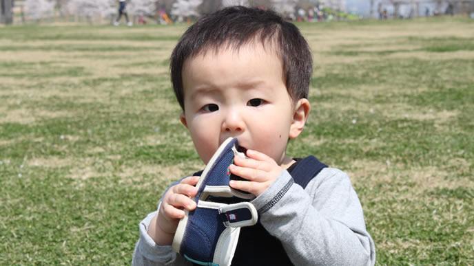 歩き疲れて靴を食べようとする赤ちゃん