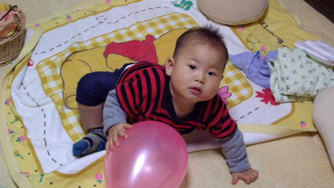 ボールで遊んでいるところを撮影される赤ちゃん