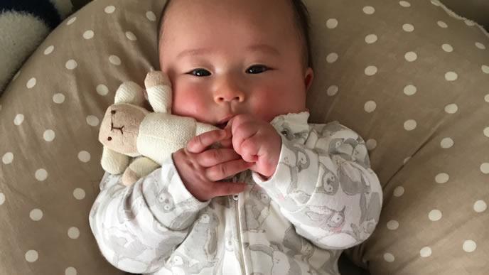 大好きなぬいぐるみを抱いて寝ようとする赤ちゃん