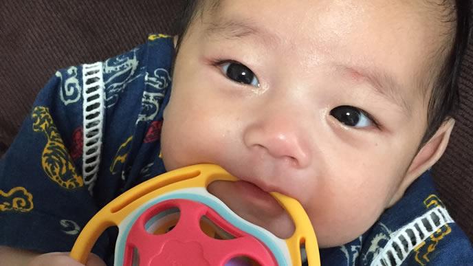 お腹が減りオーボールを食べようとしている赤ちゃん