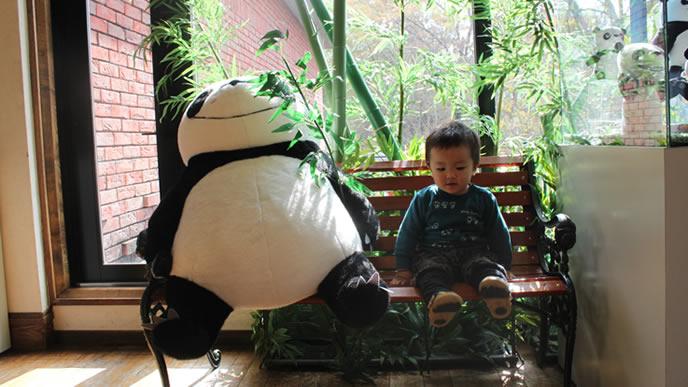 パンダとツーショットを決める少し恥ずかしがりやの赤ちゃん