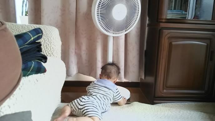 扇風機が気になり近づいてみる赤ちゃん