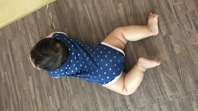 ずりばい中をカメラで撮られたむちむち赤ちゃん