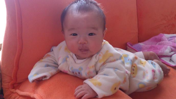 ソファーの上でずりばいする赤ちゃん
