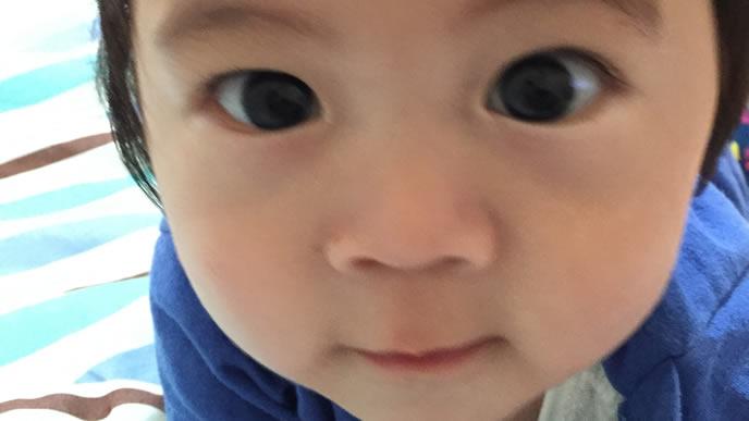 カメラの目の前まで迫ってくるずりばいが得意な赤ちゃん