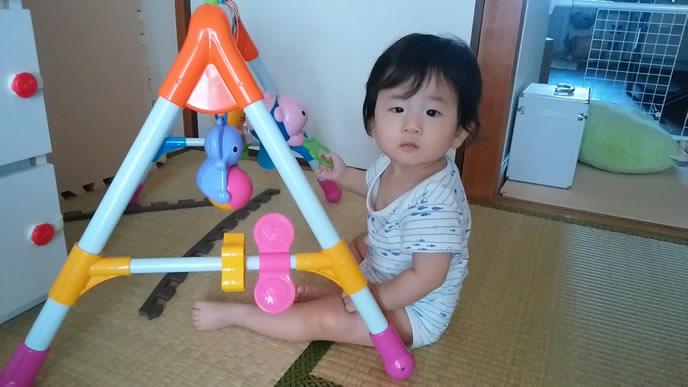ジャングルジムよりテレビに夢中の赤ちゃん