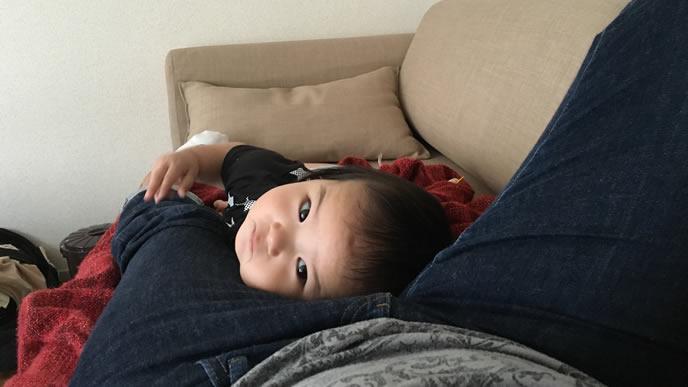 ママの脚にしがみつき甘える赤ちゃん