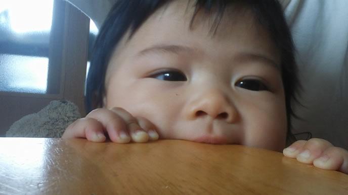 テーブルにかじりつく赤ちゃん