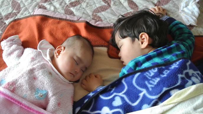 寄り添い眠る仲良し兄弟